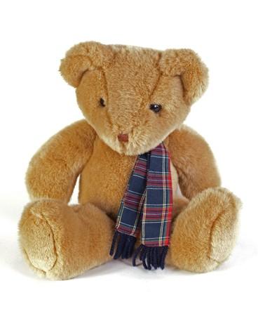 Teddy Bear with a tartan scaf on a white background. Foto de archivo