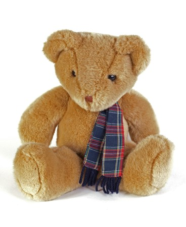 head toy: Teddy Bear with a tartan scaf on a white background. Stock Photo