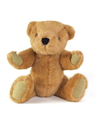 teddy bear: Oso de peluche sobre un fondo blanco liso.