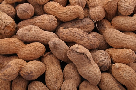 earthnut: Peanut or groundnut in its shell ready to eat,