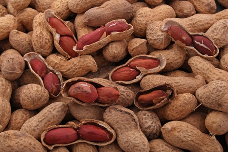 groundnut: Peanut or groundnut in its shell ready to eat,