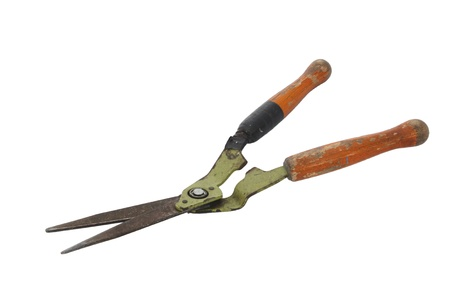 Old and rusty garden shears on a white background  photo