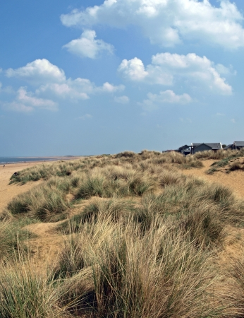 Sand dunes on the North Norfolk coast with Marram grass growing on them to give some protection.
