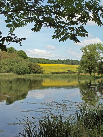 The lakes in the grounds of Wimpole Hall Stock Photo