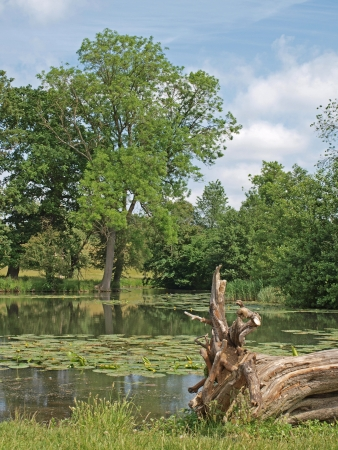 yorke: The lakes in the grounds of Wimpole Hall were first started in 1697 and gradually extended until 1767 to the size and shape they are today.