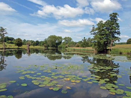 The lakes in the grounds of Wimpole Hall were first started in 1697 and gradually extended until 1767 to the size and shape they are today.
