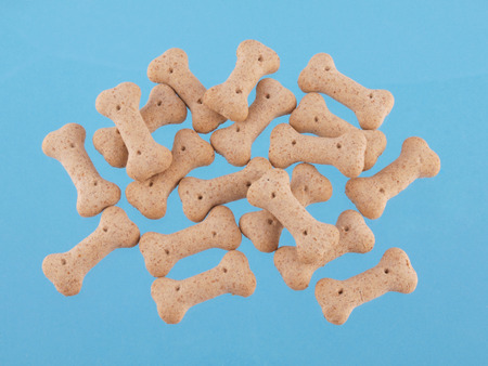 Close up of dog biscuits in the shape of boneson a blue background  Stock Photo