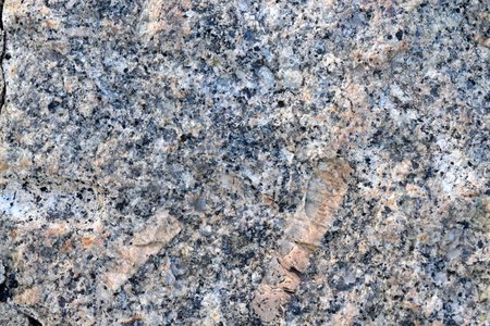 A block of grey Dartmoor granite, showing large crystals of feldspar and smaller ones of quartz and mica Stock Photo