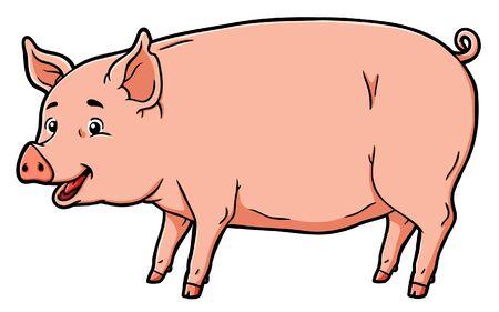Pig vector on white