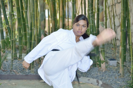 martial arts woman: A high karate kick