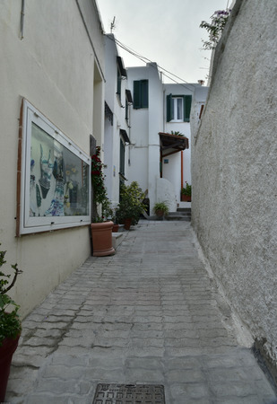 geranium color: island of Ischia. alleys, narrow streets, stairs, small squares.