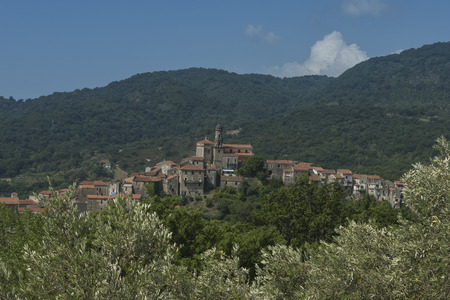 invade: Vibonati. Cilento, Italy. View of the old town. View of the bell tower and the cathedral. Group of stone houses of the old invade the top of the hill. View between the olive trees. blue sky and white clouds.
