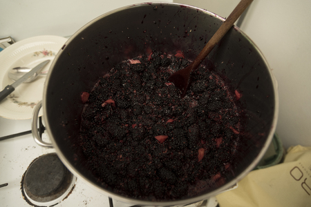 reds: Jam Mulberry balcks. Preparation. Fruits in the pot whit chopped sugar and strawberries.