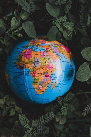 Globe in Green Grass