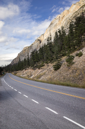 View along a deserted mountain road lined with evergreen pine trees under majestic rocky cliffs