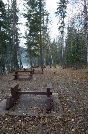 Deserted picnic area with tables alongside a lake with dead autumn leaves on the ground and tall green conifers in the background Stock Photo