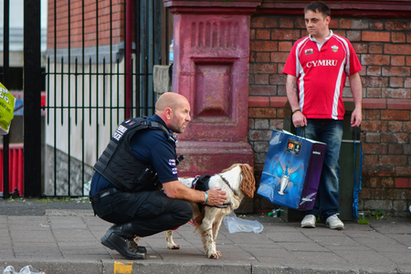 sniffer: CARDIFF, UK - 3 JUNE 2017 Sniffer dog and handler during Champions League Final. British police and security services on high alert as hundreds of thousands of fans enjoy football in the capital of Wales