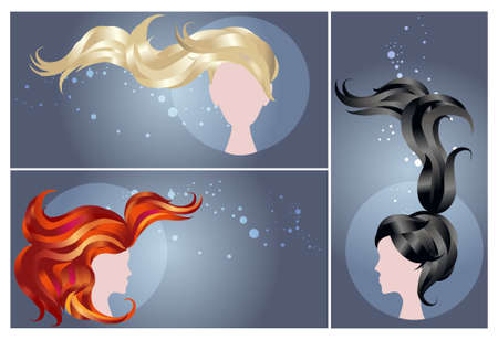 Colors hair vector template