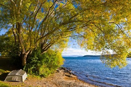 タウポ湖、タウポ、北の島ニュージーランドの横にあるツリーの下の小さなボート
