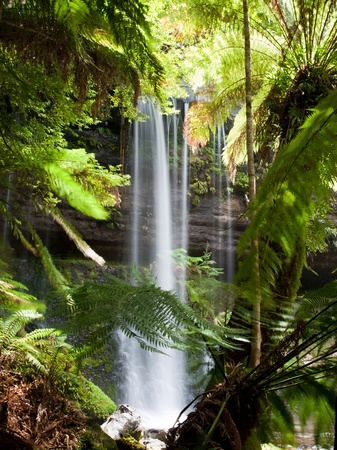 tasmania: Russell Falls, Mount Field National Park, Tasmania, Australia Stock Photo