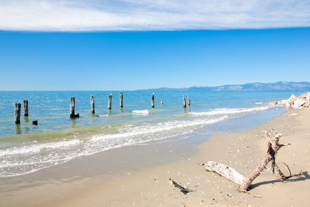 new zeland: Collingwood Beach South Island New Zeland Stock Photo