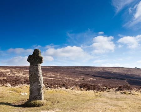 warren: Bennetts Cross at Headland Warren, Dartmoor National Park, Devon England UK