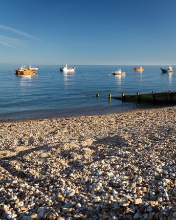 beach shingle: La spiaggia di ciottoli a Selsey Bill occidentale S��es Inghilterra Regno Unito