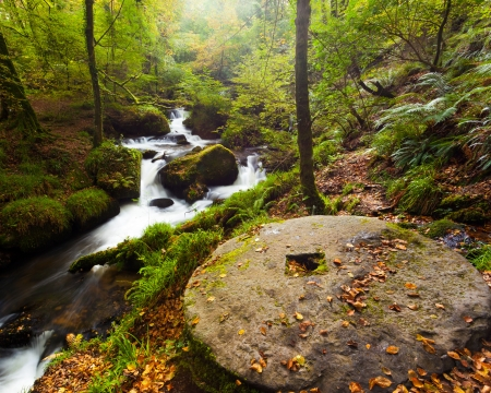 millstone: Millstone and waterfalls in the woods at Kennal Vale nature reserve Cornwall England UK Stock Photo