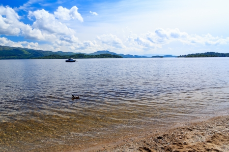 Summer on the banks of Loch Lomond, The Trossachs National Park Scotland UK Stock Photo - 20704781