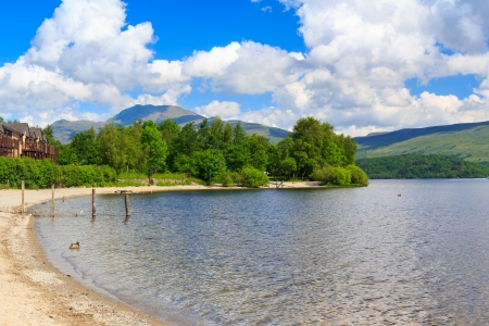 lochs: Summer on the banks of Loch Lomond, The Trossachs National Park Scotland UK