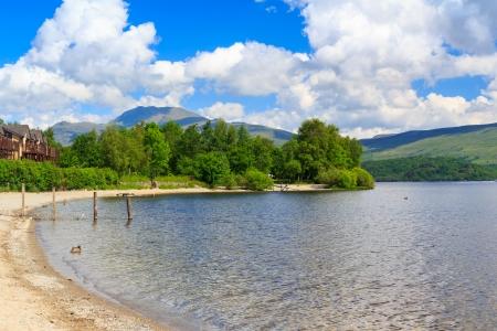 lochs: Summer on the banks of Loch Lomond, The Trossachs National Park Scotland UK