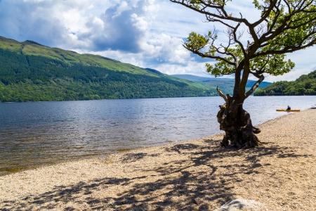 lochs: Firkin Point at Loch Lomond in The Trossachs National Park Scotalnd UK