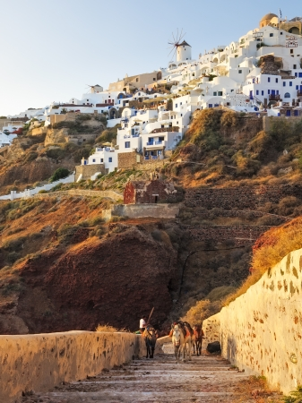 Evening light on the path down to Path to Ammoudi Bay Santorini with Oia above. photo