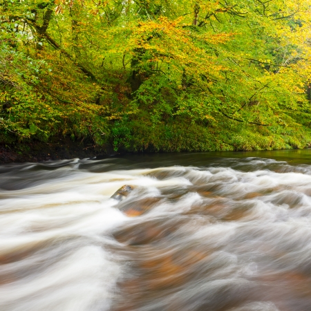 Autumnal River Dart Scene at Newbridge Dartmoor National Park Devon England UK Europe photo