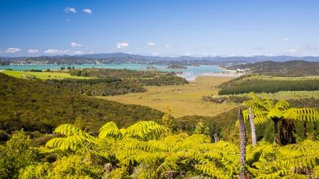 newzealand: View from Mount Bledisloe lookout, Waitangi, Bay of Islands, Paihia, Northland, New Zealand Stock Photo