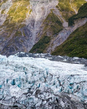 fox glacier: Fox Glacier West Coast South Island New Zealand