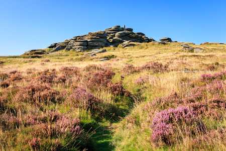 devon: Bellever Tor in Dartmoor National Park Devon England UK Europe