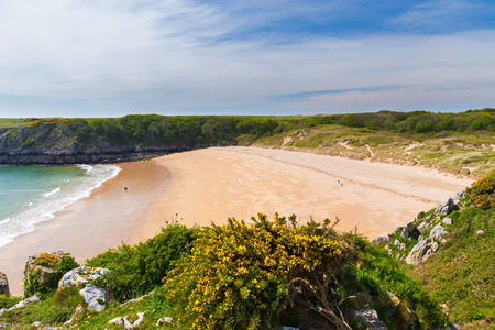 pembrokeshire: Overlooking the stunning beach at Barafundle Bay on the Pembrokeshire coast of South Wales UK Europe
