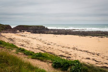 pembrokeshire: Freshwater West Beach near Castlemartin, Pembrokeshire Wales UK Europe