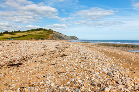 jurassic: View along the beach at Charmouth on the Jurassic coast of  Dorset England UK Stock Photo