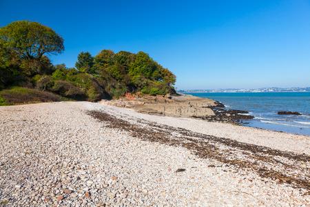 shingle beach: The beautiful shingle beach at Elberry Cove Brixham Devon England UK Europe