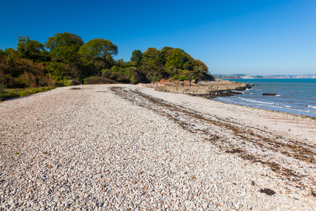 shingle: The beautiful shingle beach at Elberry Cove Brixham Devon England UK Europe