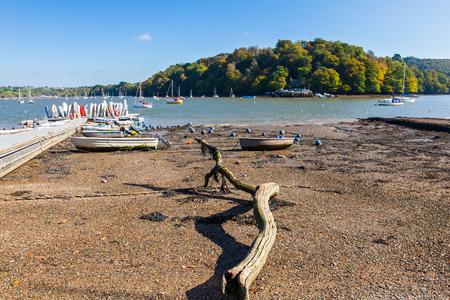 jamones: Dittisham en el río Dart jamones del sur Devon Inglaterra Reino Unido Europa Foto de archivo