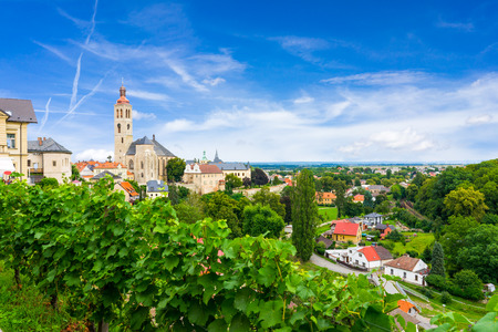 ceska: Overlooking a vineyard and the town at Kutna Hora Czech Republic Stock Photo