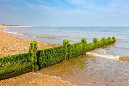 groynes: Timber Groynes on the shingle beach at Pagham West Sussex England UK Europe Stock Photo