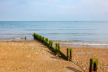 Timber Groynes on the shingle beach at Pagham West Sussex England UK Europe Stock Photo
