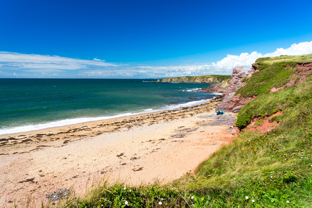 Overlooking the golden sandy beach at South Milton Sands Devon England UK Europe