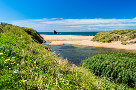 South Milton Ley Nature  Reserve and a view out to South Milton Sands Devon England UK Stock Photo