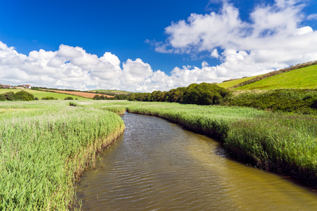 South Milton Ley Reserve a 16 hectare wildlife refuge at South Milton Sands Devon England UK