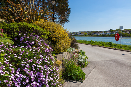 King George V Memorial Walk next to Copperhouse Pool Hayle Cornwall England UK Europe